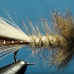 Pheasant Tail Fly